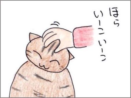 f:id:chai-ko:20201115162000j:plain