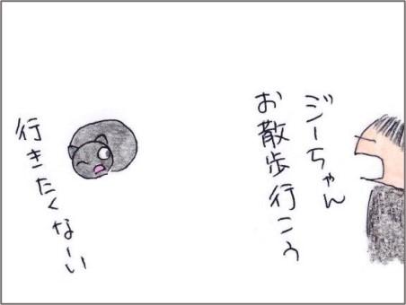 f:id:chai-ko:20201123190341j:plain