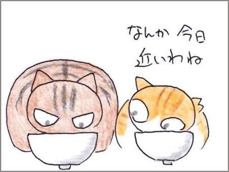 f:id:chai-ko:20201125202722j:plain