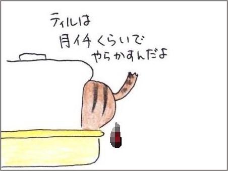 f:id:chai-ko:20201203194352j:plain