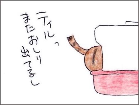 f:id:chai-ko:20201204204836j:plain