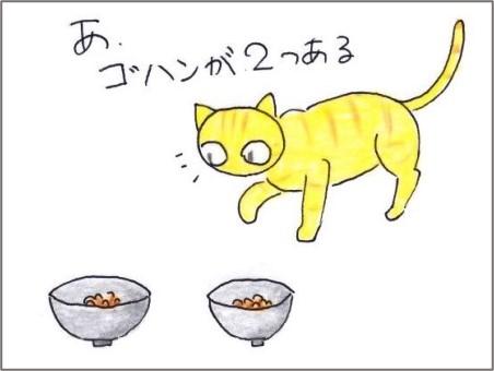 f:id:chai-ko:20201219181640j:plain