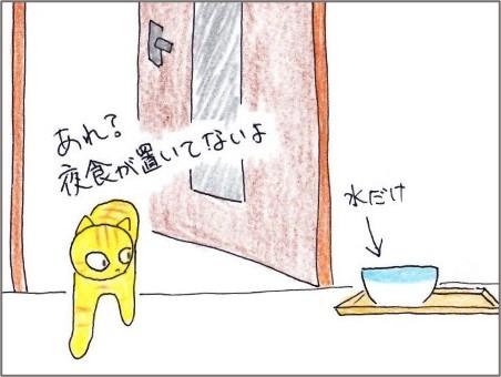 f:id:chai-ko:20210103194754j:plain