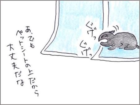 f:id:chai-ko:20210107203132j:plain