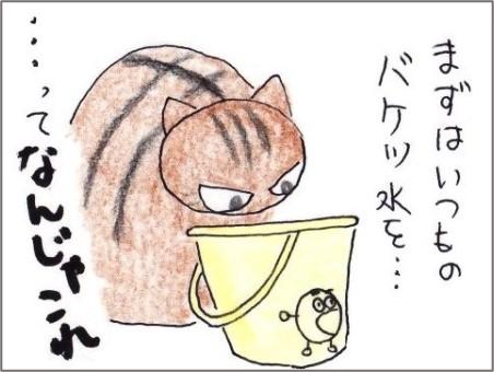 f:id:chai-ko:20210109215144j:plain