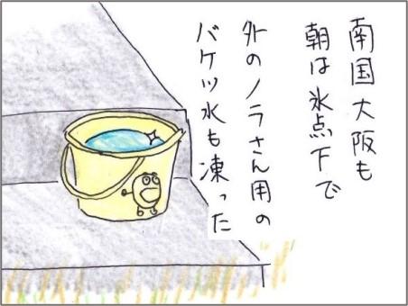 f:id:chai-ko:20210109220908j:plain