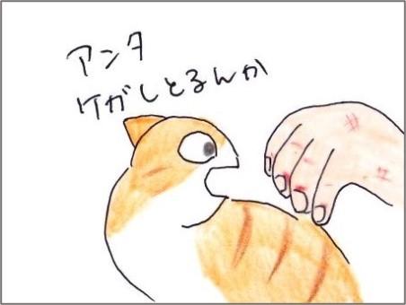 f:id:chai-ko:20210110201628j:plain