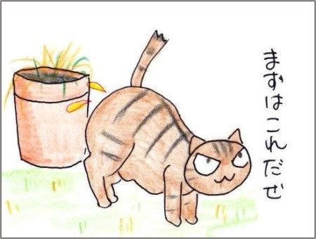 f:id:chai-ko:20210112201830j:plain