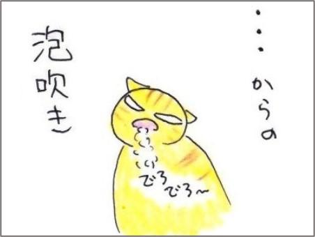 f:id:chai-ko:20210210204348j:plain