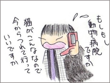 f:id:chai-ko:20210210204353j:plain