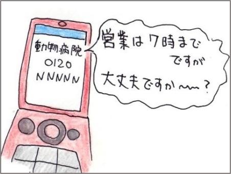 f:id:chai-ko:20210210204356j:plain