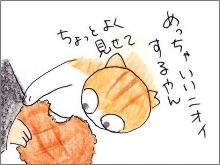 f:id:chai-ko:20210214192018j:plain
