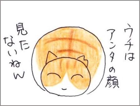 f:id:chai-ko:20210221190716j:plain