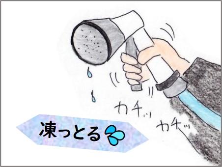 f:id:chai-ko:20210225213356j:plain