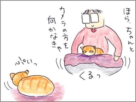 f:id:chai-ko:20210306180501j:plain