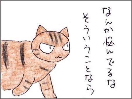 f:id:chai-ko:20210308194052j:plain