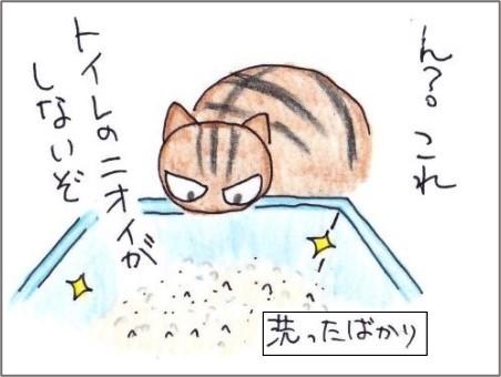 f:id:chai-ko:20210319193852j:plain