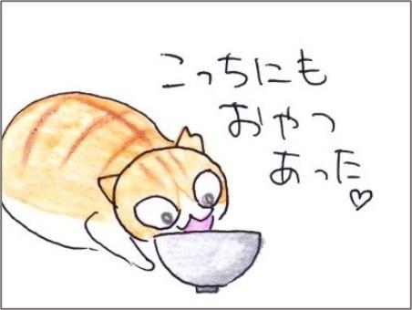 f:id:chai-ko:20210418132236j:plain