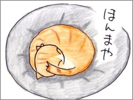 f:id:chai-ko:20210427195456j:plain