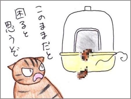 f:id:chai-ko:20210524201939j:plain