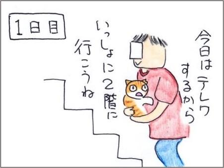 f:id:chai-ko:20210526184919j:plain
