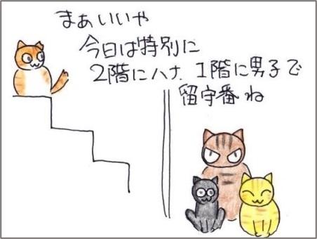 f:id:chai-ko:20210526195241j:plain