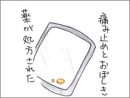 f:id:chai-ko:20210616194346j:plain