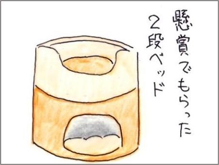 f:id:chai-ko:20210622191818j:plain