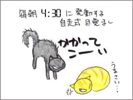 f:id:chai-ko:20210702200447j:plain