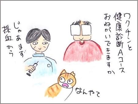 f:id:chai-ko:20210708191416j:plain