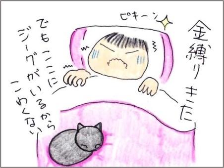f:id:chai-ko:20210710174347j:plain