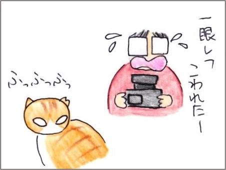 f:id:chai-ko:20210723180631j:plain
