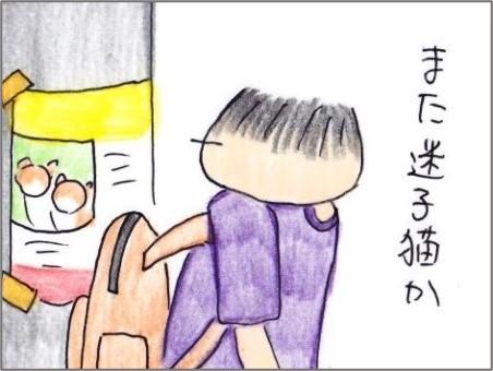 f:id:chai-ko:20210731123734j:plain