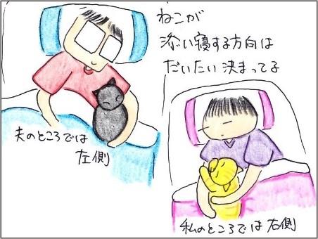 f:id:chai-ko:20210819200733j:plain
