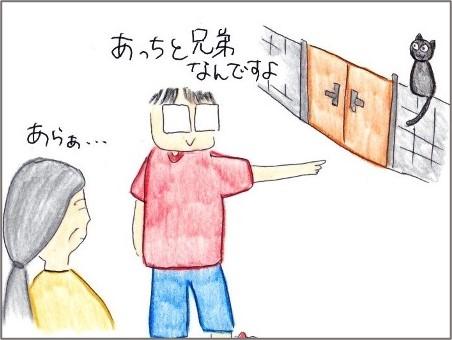 f:id:chai-ko:20210922203950j:plain