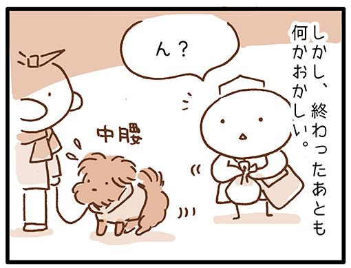 モフモフ犬のイラスト