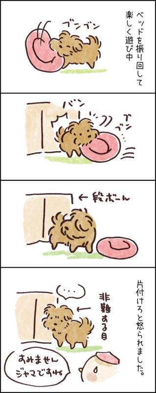 犬の4コマ漫画