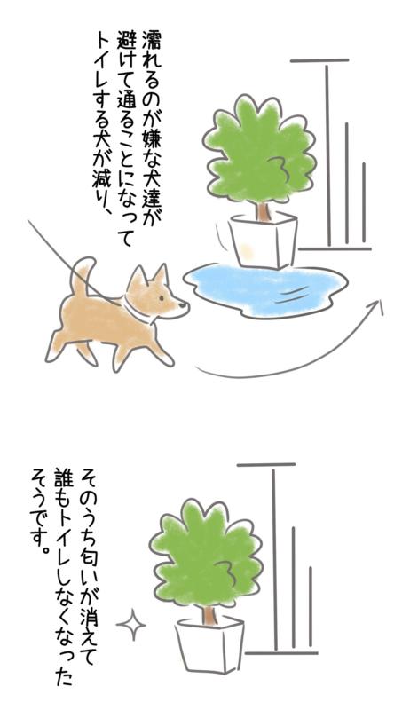 犬のおしっこ対策のイラスト