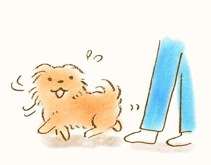 まとわりつく犬のイラスト