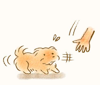 撫でようとすると逃げる犬のイラスト