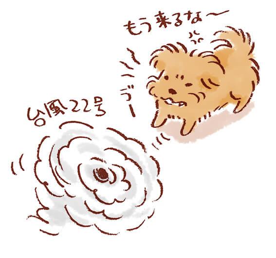 台風に唸る犬のイラスト