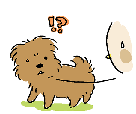 犬が怪訝そうに見るイラスト