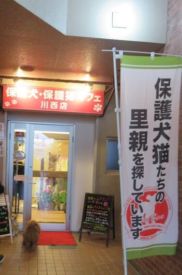 保護犬カフェ川西店の写真