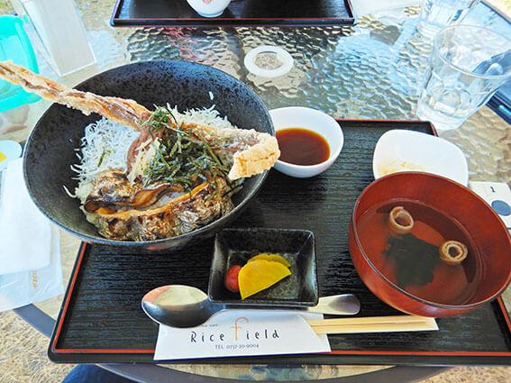 紀州みのしま丼定食の写真