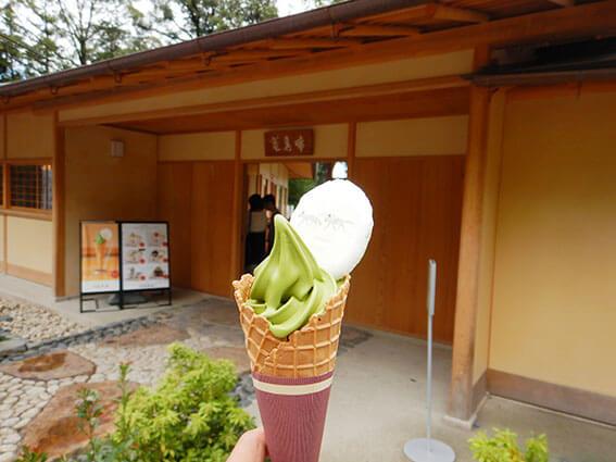 抹茶ソフトクリームの写真