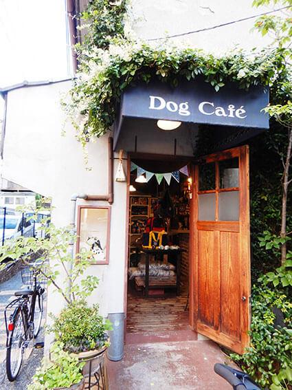 ドッグカフェの入り口の写真