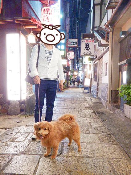 法善寺横丁と犬