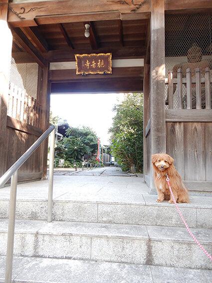 お寺ダイニング観音寺