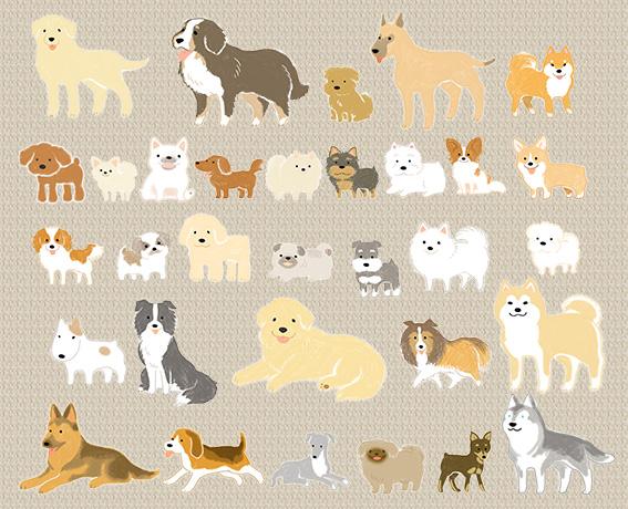 色んな犬種一覧のイラスト