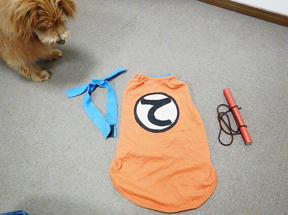 犬用ドラゴンボールの服装コスプレ